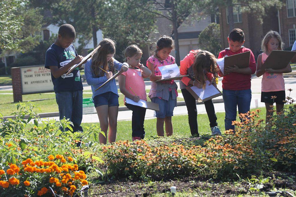 Ault Elementary garden