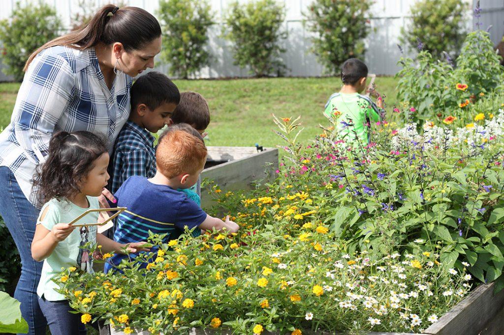 Lakewood Montessori garden