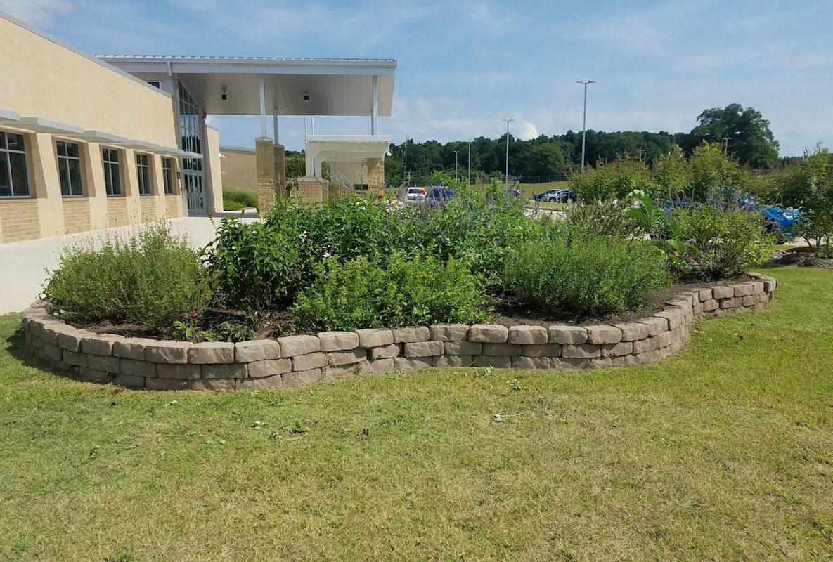 Wells Elementary Garden