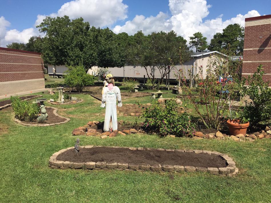 Sampson Elementary Garden